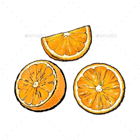 Set of Oranges by Sabelskaya Set of realistic colorful hand drawn half, slice and segment of ripe, juicy orange, sketch vector illustration isolated on white b