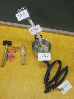 Aparell digestiu, realitzem un experiment per veure tot el procés amb el menjar que recullim al llarg del dia.