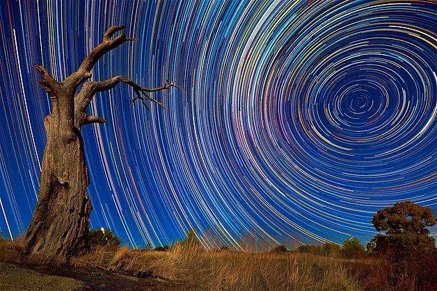 Árvore solitária forma o primeiro plano desta paisagem de rastos de luz