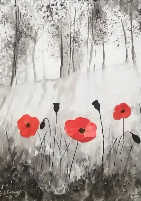Poppies - Graham Colthorpe