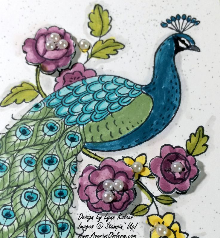 Perfect Peacock - Stamping with Avery's Owlery