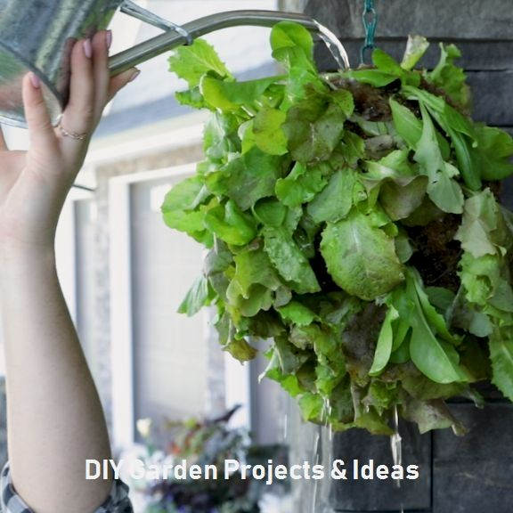 13 Creative Outdoor Projects Which You Can Do Yourself #diygarden