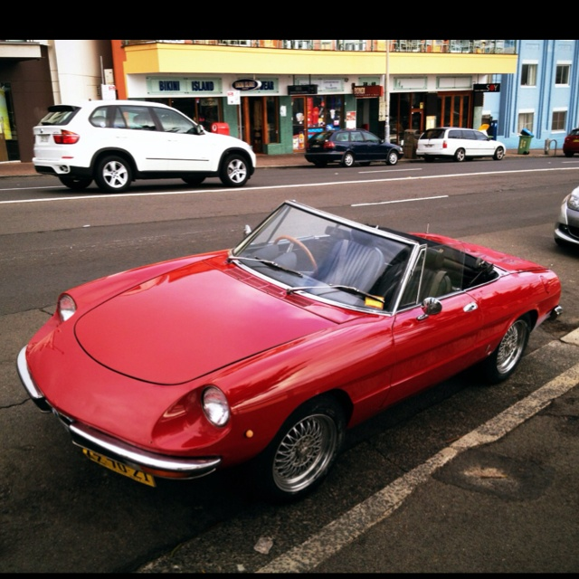 316 Best Alfa Romeo Spider Images On Pinterest