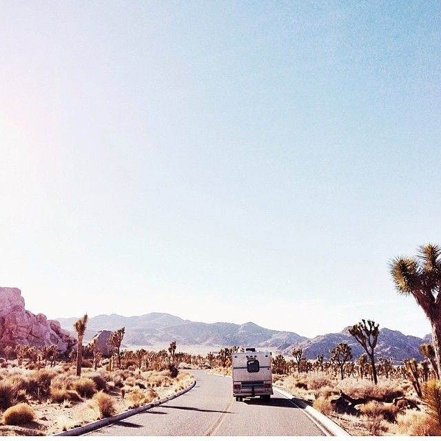 Den einzigartigen Joshua Tree Nationalpark in der Nähe von Palm Springs, #USA erleben: http://www.usa-mietwagen.tips/reiserouten/3-wochen-westkueste-ein-klassiker/