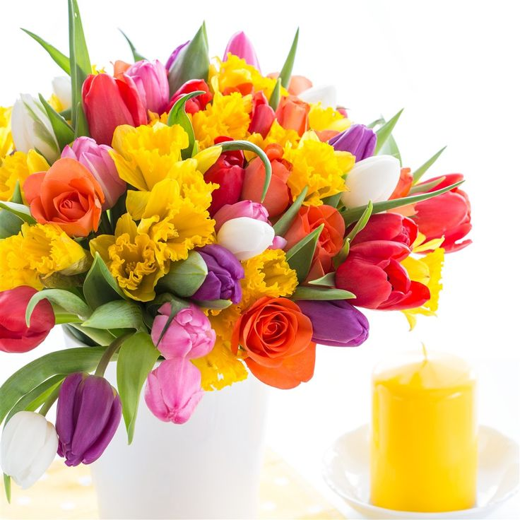 Beautiful flowers - Gyönyörű virágok - Megaport Media
