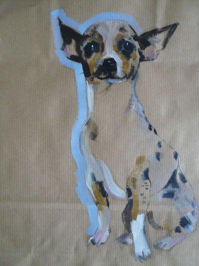 sally muir | Chihuahua