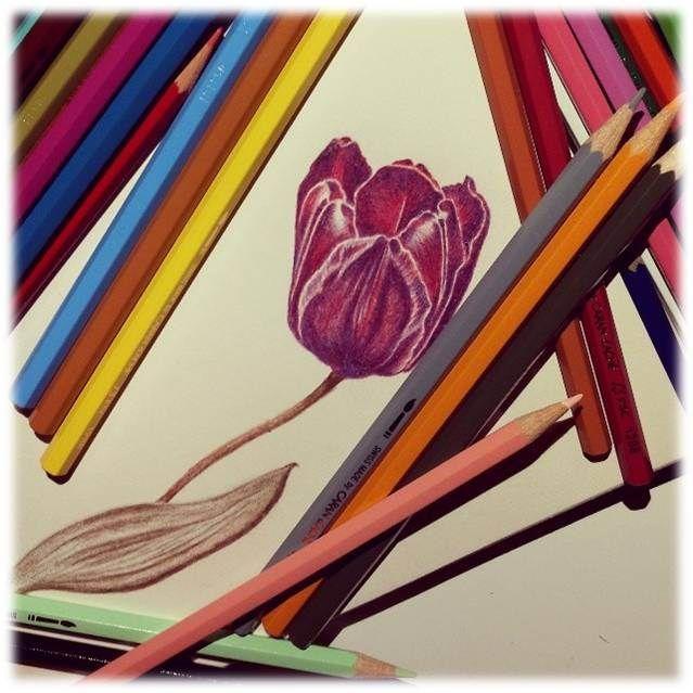 Tulipa. Flor de charme e requinte, significa o amor perfeito e associada à prosperidade e independência. Nesta cor representa tranquilidade e paz.