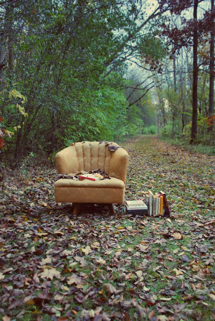 """jamigreenfield: """" A place to sit. """" and she let us use this one for our Facebook page"""