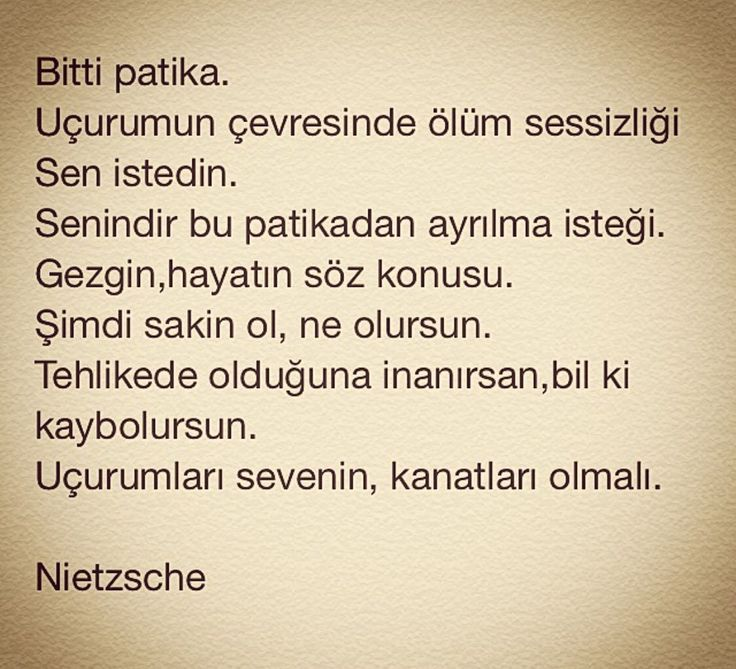 ...uçurumları sevenin, Kanatları olmalı.. Nietzsche sözleri #alıntı