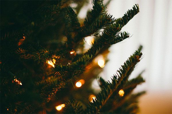 {wishing you a most magical holiday season} by {this is glamorous}, via Flickr