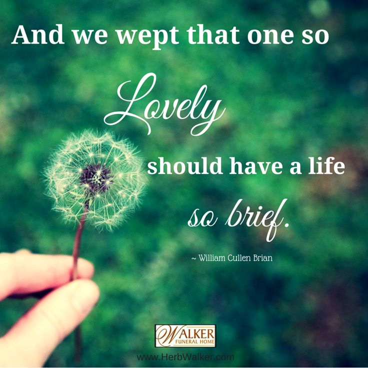 Inspirational Quotes On Life: Best 25+ Quotes On Grief Ideas On Pinterest