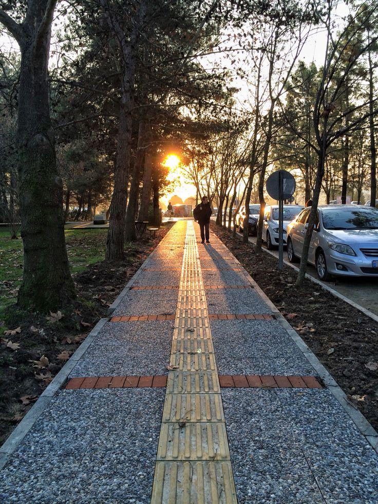 Uludağ Üniversitesi. Bursa. Sunset. Path