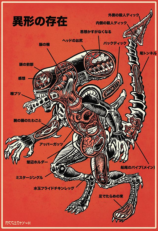 An Illustrated Anatomical Guide To Popular Monsters by Brad McGinty