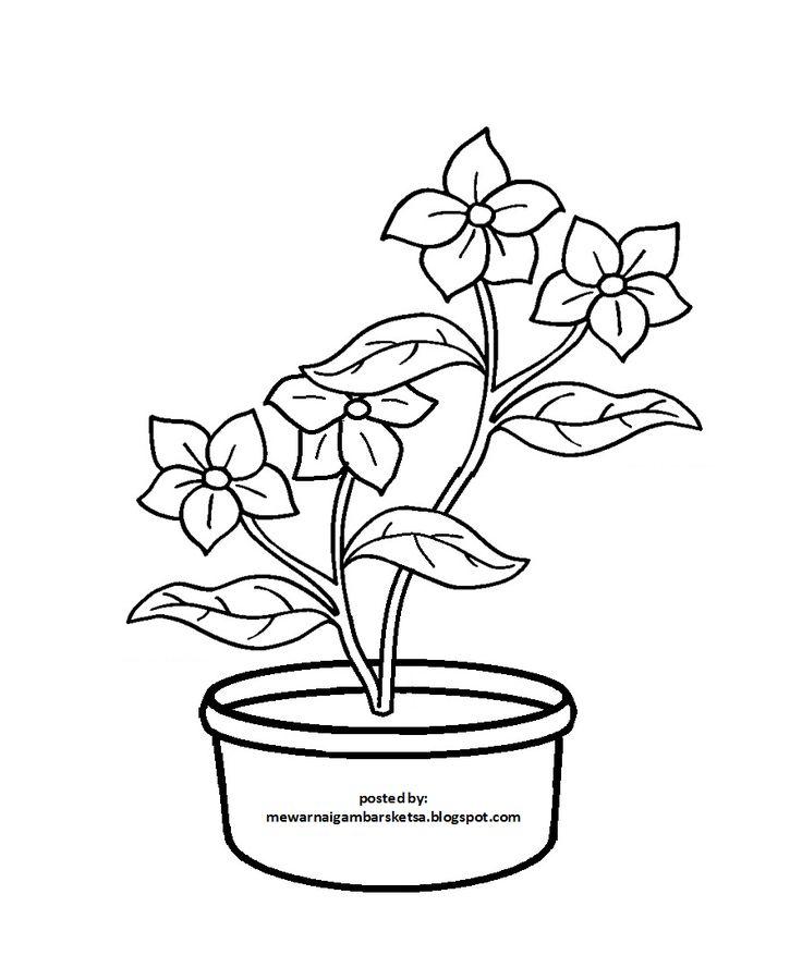 Mewarnai Gambar 20 Mewarnai Gambar Bunga Di 2021 Bunga Sketsa Bunga Gambar