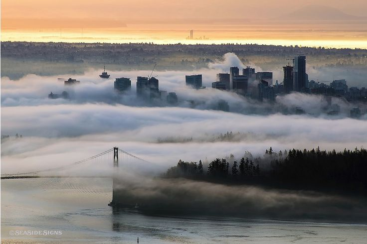 Image result for fog in vancouver