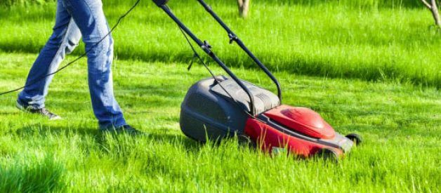 Best Electric Lawn Mower 2018 Buying Guide & Top Electric Lawn Mower Reviews https://yardeningpulse.com/best-electric-lawn-mower/