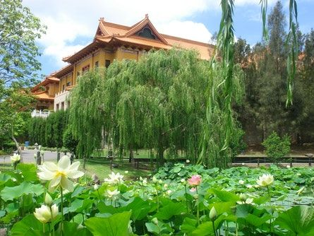 Nan Tien Temple | Wollongong Attraction