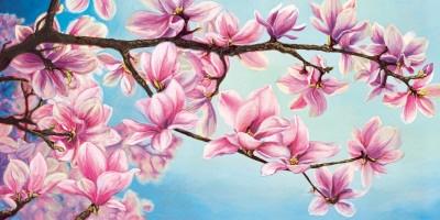 Magnolias are blossoming tight now... So pretty!