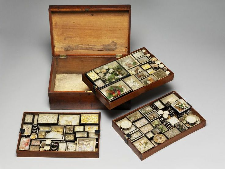 Box of shells, about 1800, Mahogany and pine box with pine trays holding cardboard and glass boxes containing shells and wire. Given in memory of Mrs Joan Griffith.