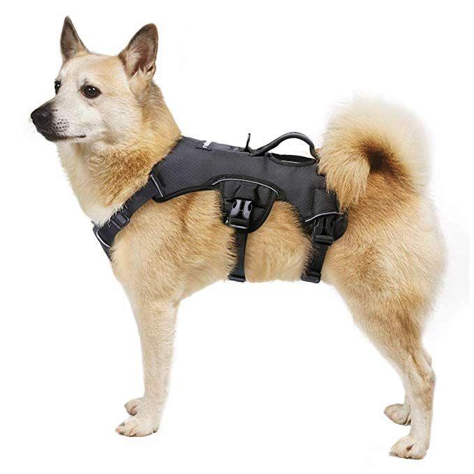 Rabbitgoo Escape Proof Dog Harness No Pull Adjustable Reflective