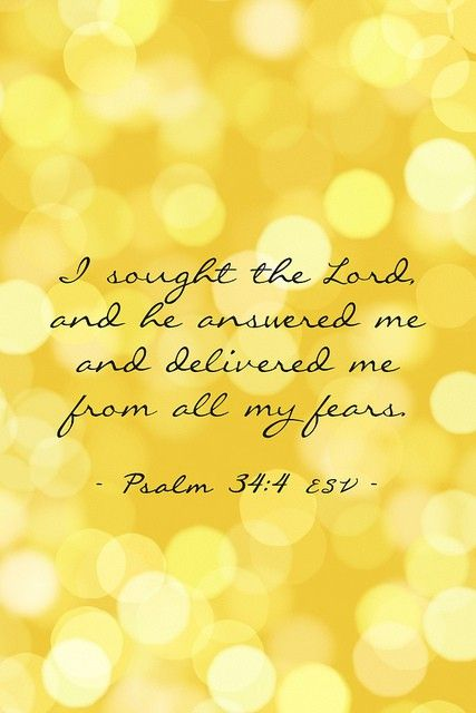 Psalm 34:4: God Will, The Lord, Famous Quotes, Remember This, Psalms 34 4, Prayer Request, God Is, Bible Ver, Senior Quotes