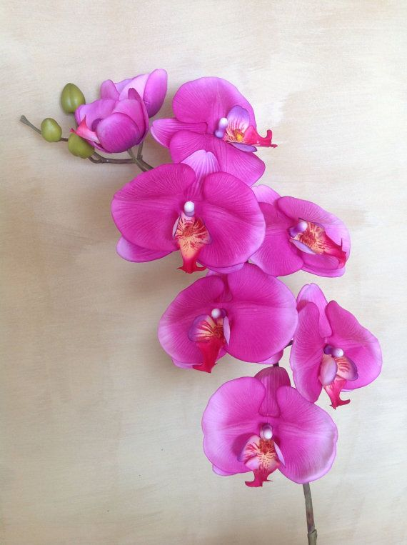 103 cm Real Touch Phalaenopsis Orchid  Cerise by Anggerik on Etsy