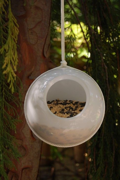 glass lampshade birdfeeder