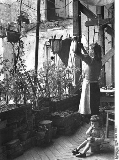 1947 Tempelhof-Tomaten und Bohnen statt einer Wand….
