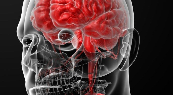 Gluten and Inflammatory Disorders of the Brain and Nervous System | Healing the Body