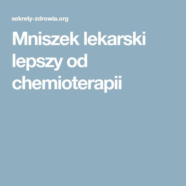 Mniszek lekarski lepszy od chemioterapii