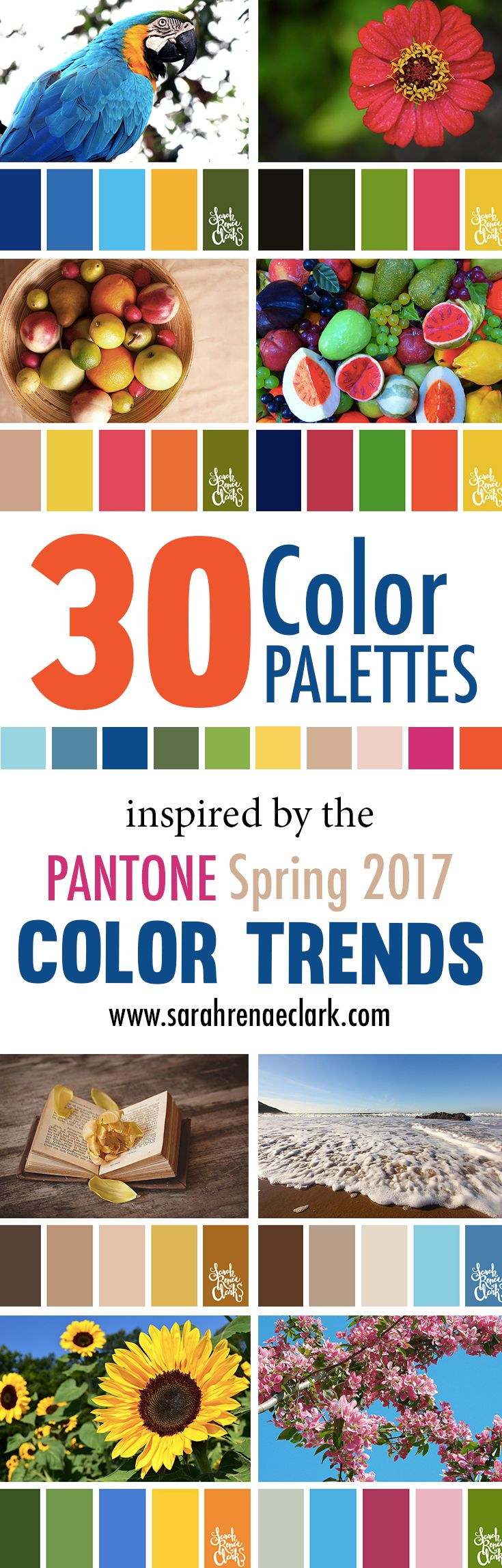 Book color scheme - 30 Color Palettes Inspired By The Pantone Spring 2017 Color Trends