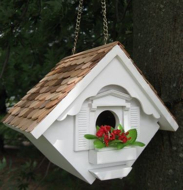 Best 25 wren house ideas on pinterest diy birdhouse for Song bird house plans