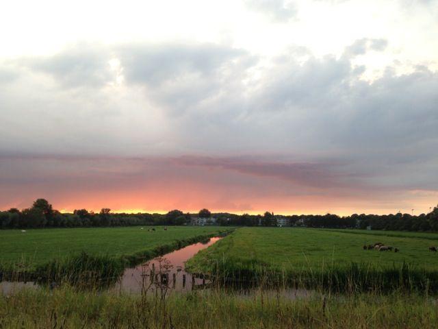 The dutch sky over grassland