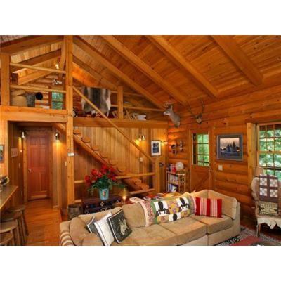 Construcci n de caba as r sticas alpinas techos de for Fachadas de cabanas rusticas