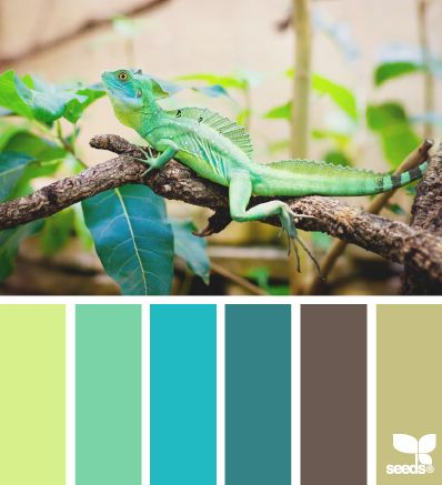 green blue brown