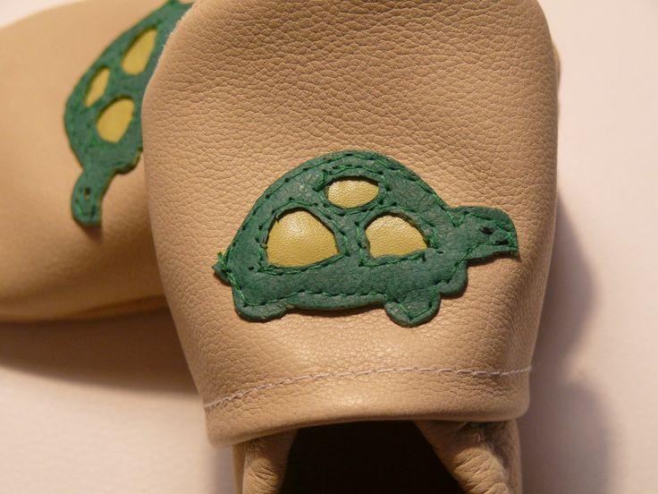 turtle / teknős