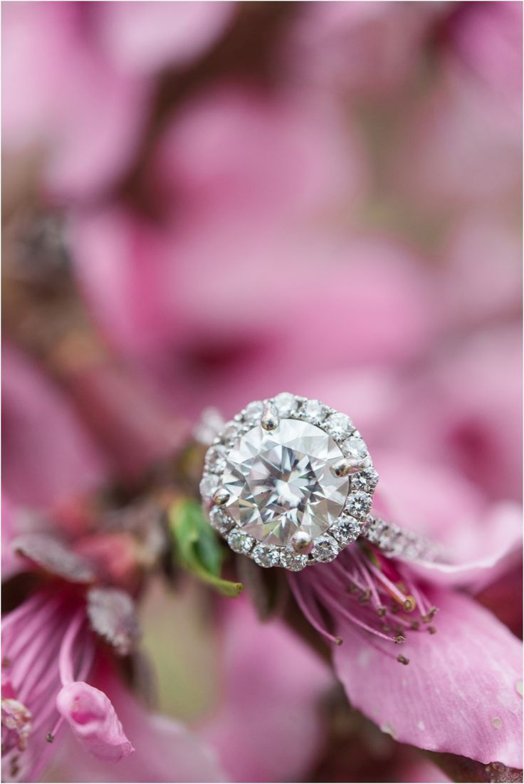 27 best Wedding Ring Inspiration images on Pinterest | Promise rings ...