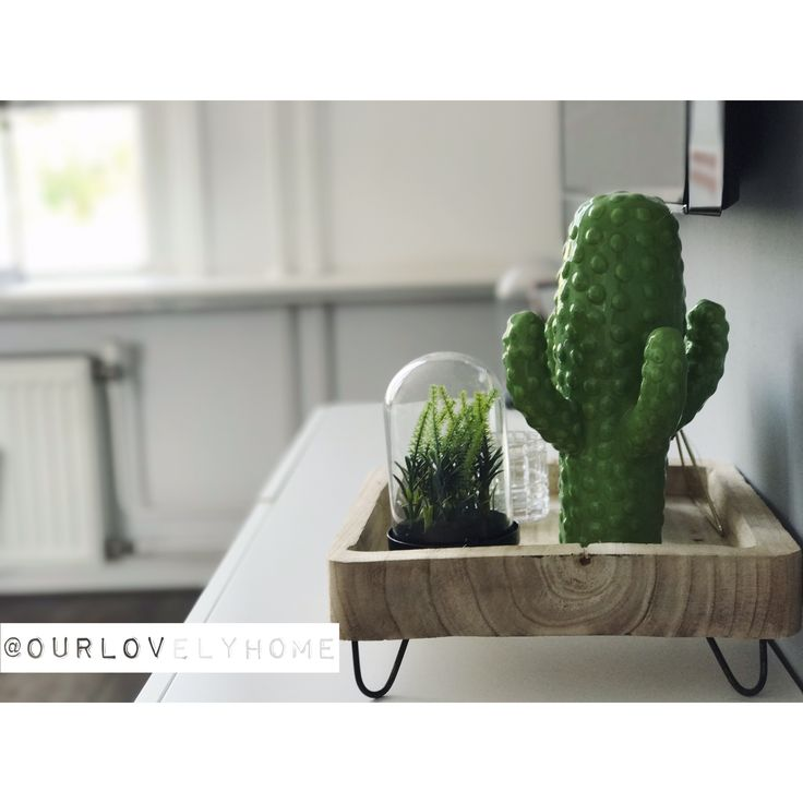 We stick together. 🌵✖️•✖️•✖️•✖️•✖️•✖️•✖️•✖️•✖️•✖️•✖️•✖️•✖️• • • #our #house #home #stoerwonen #zwartwitwonen #binnenkijken #cactus #cactuslover #green #decor #decoration #decorationideas #interiordecor #tvcabinet #wood #plant