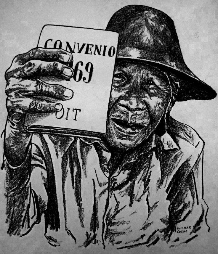 Incumplimiento del Convenio 169 de la OIT que establece entre otros el deber para el Estado de Costa Rica de consultar las medidas legislativas y administrativas susceptibles de afectar directamente a los pueblos originarios, a través de sus instituciones representativas y procedimientos apropiados, de conformidad a sus características socioculturales, dicho proceso debe ser realizado de buena fe con la finalidad de llegar a un acuerdo o lograr el consentimiento acerca de las medidas…