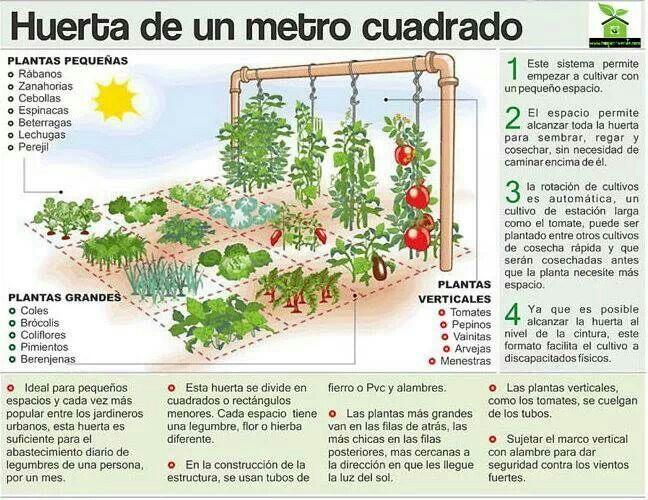 Huerta 1m2