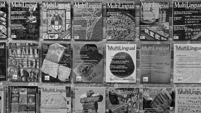 Speaking of MultiLingual… [Podcast] #podcast #language #multilingual #translation