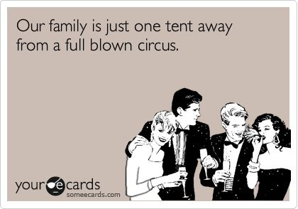 Our family is just one tent away from a full blown circus.Laugh, Too Funny, So True, I M Screw, Things, Ecards, So Funny, True Stories, Guess I M