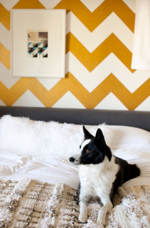 Bold Cevron wall: Border Collies, Guest Bedrooms, Bedrooms Design, Architecture Interiors, Design Sponge, Design Bedrooms, Chevron Wall, Bedrooms Decor, Chevron Stripes