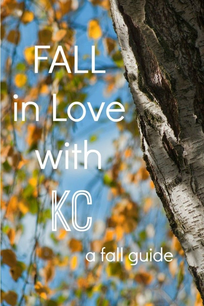 FALL in Love with KC: Your Guide to Festivals, Pumpkins and Apples | Kansas City Moms Blog