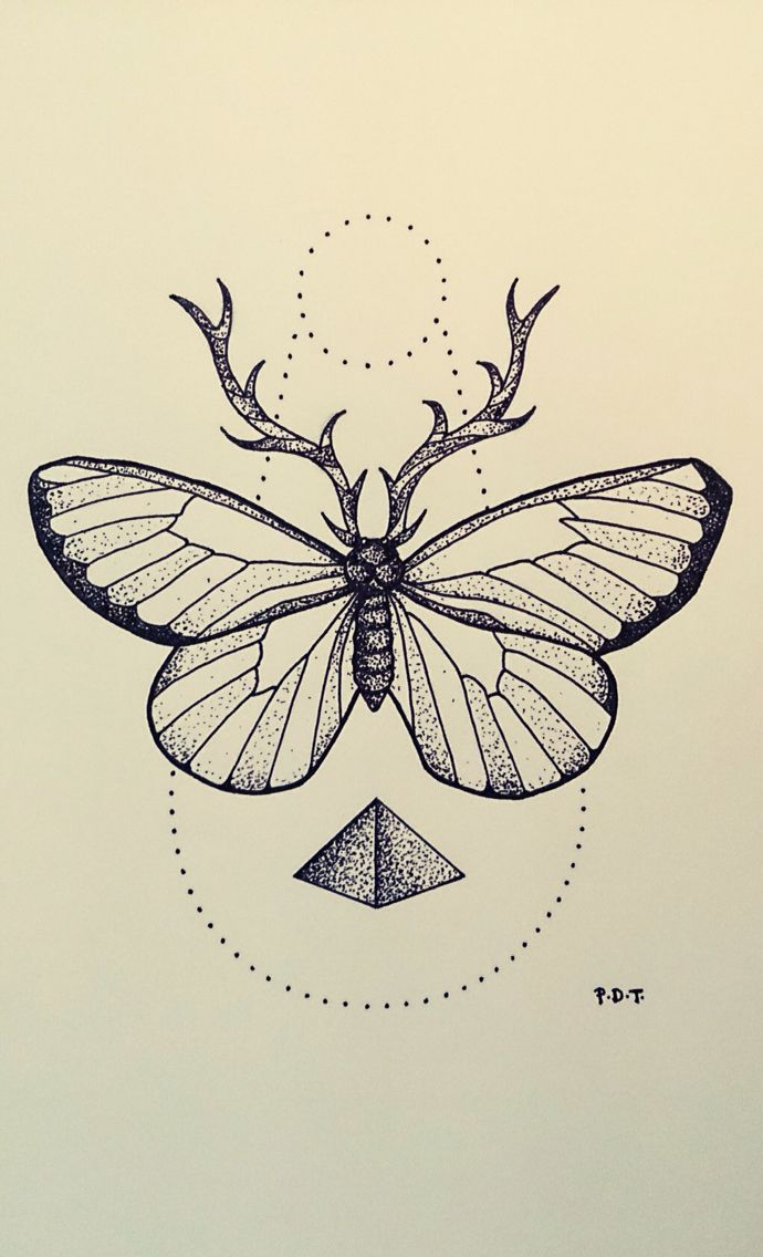 andrey svetov  If this was a moth and the symbol underneath was the alchemy symbol for earth
