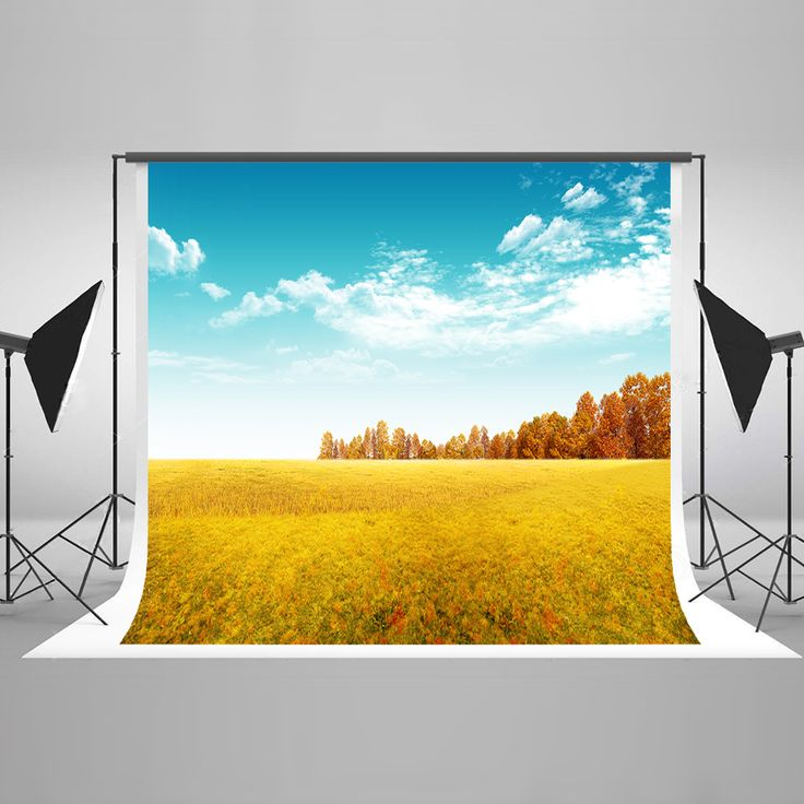 Find More Background Information about Kate Autumn Scenic Photography Backdrop Grassland Blue Sky Photographic Background Natural Fondos De Estudio Fotografia ,High Quality Background from Marry wang on Aliexpress.com