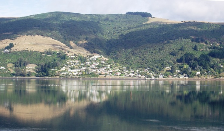 Mirrored reflections, Otago Peninsula, New Zealand.