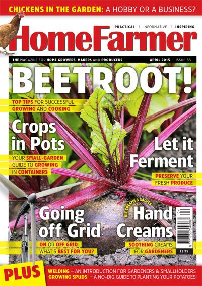 April 2015 Issue 85