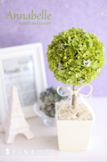 Annabelle topiary http://item.rakuten.co.jp/fine-flower/c/0000000150/