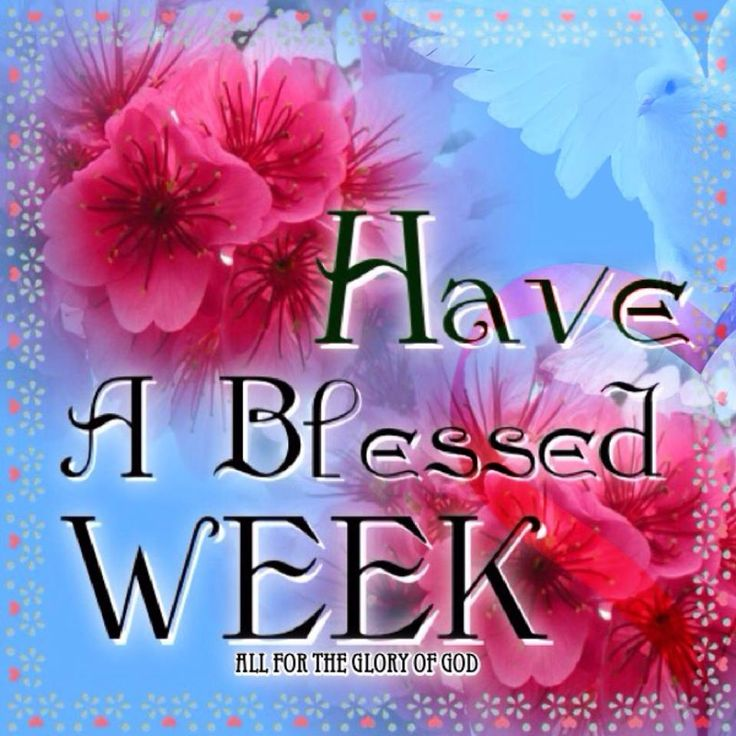 Have a Blessed Week. God Bless.